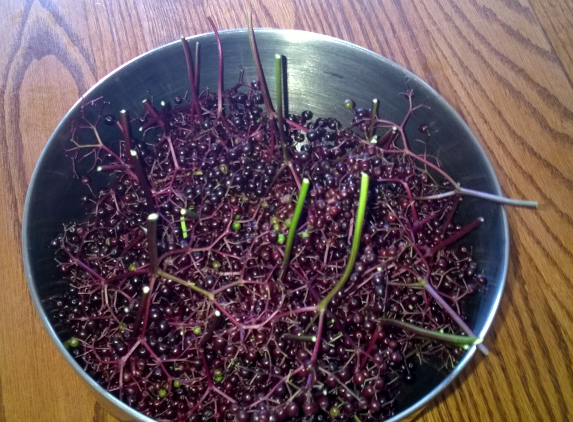 elderberry stems in the bowl